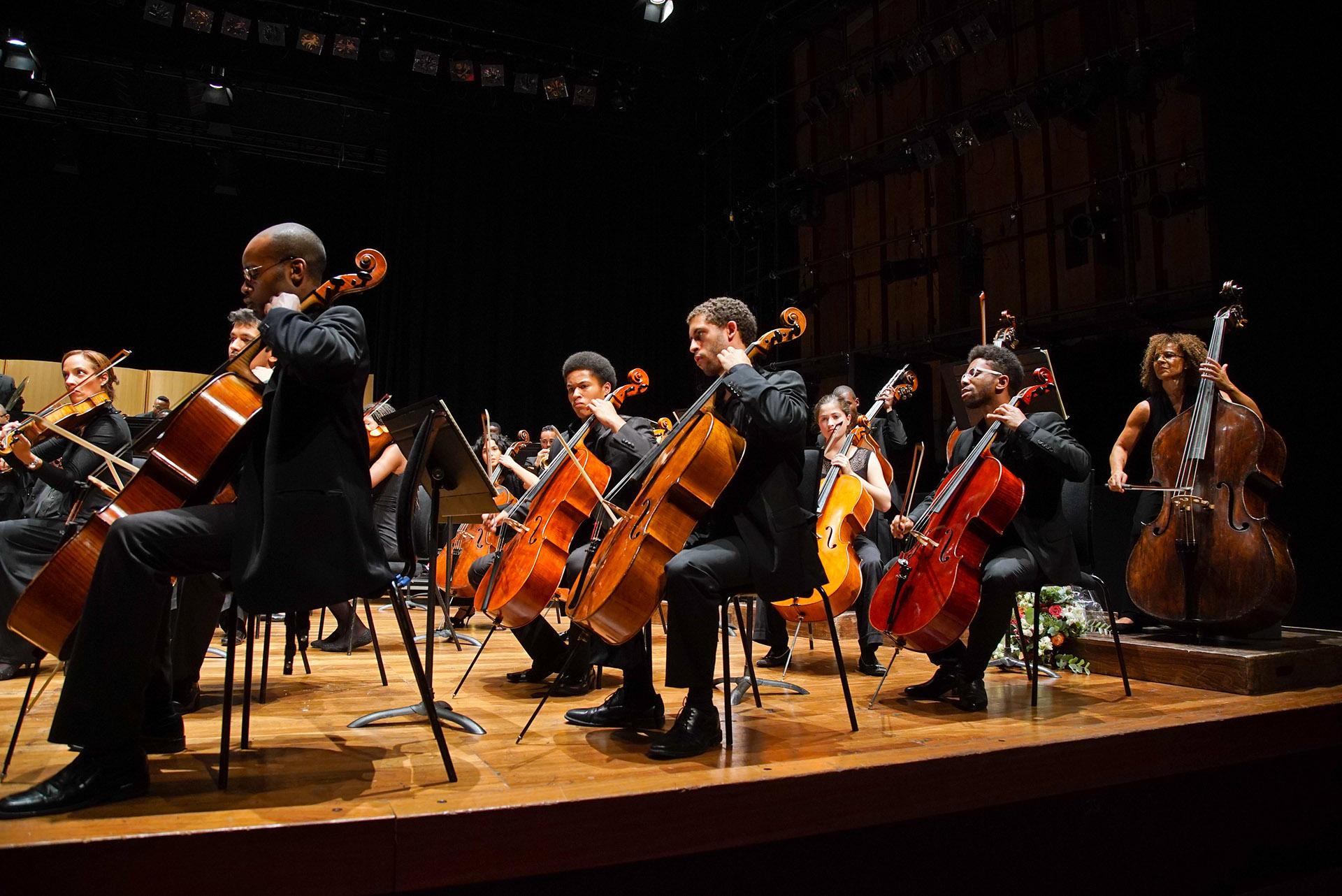 Chineke Orchestra (c) Zen Grisdale 2